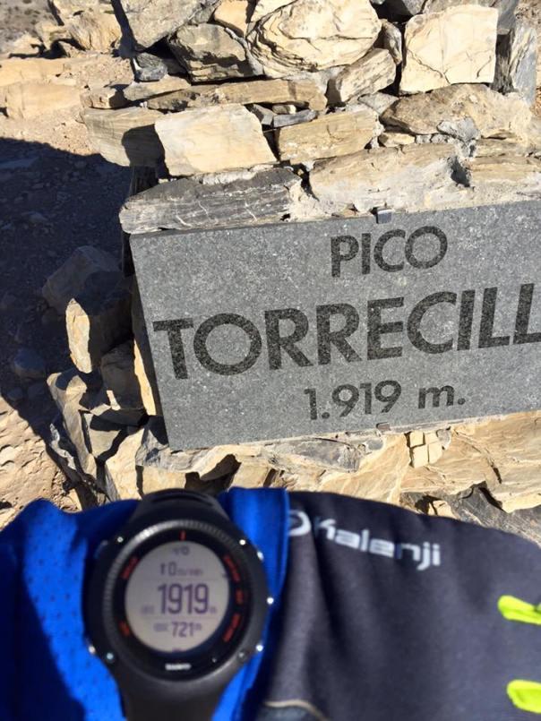 torrecilla1