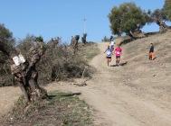 II Trail El Bosque-62