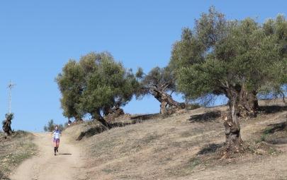 II Trail El Bosque-88