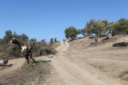 II Trail El Bosque-93